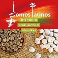 Somos Latinos Snc - Italia